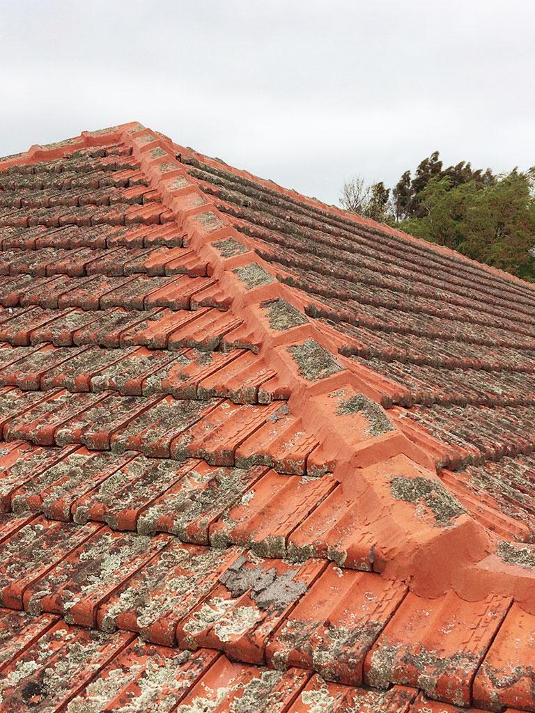 TPF Roof Restorations Property Maintenance Roof Restoration - Clay tile roof maintenance